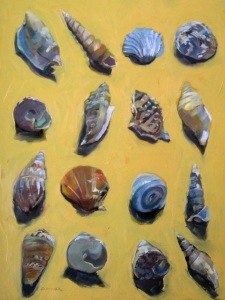 More Seashells
